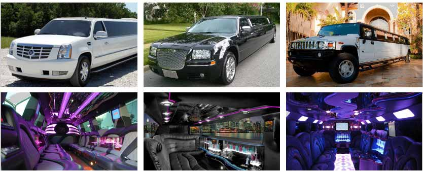 Wedding Transportation Party Bus Rental Toledo